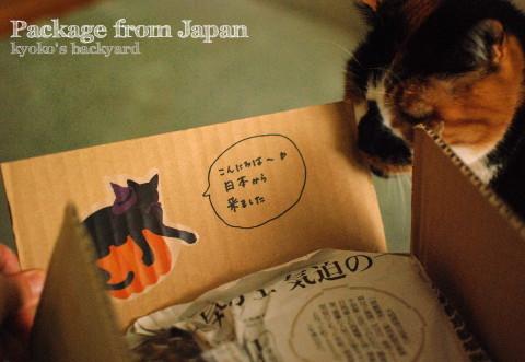 京都からの素敵な小包♪_b0253205_05185629.jpg
