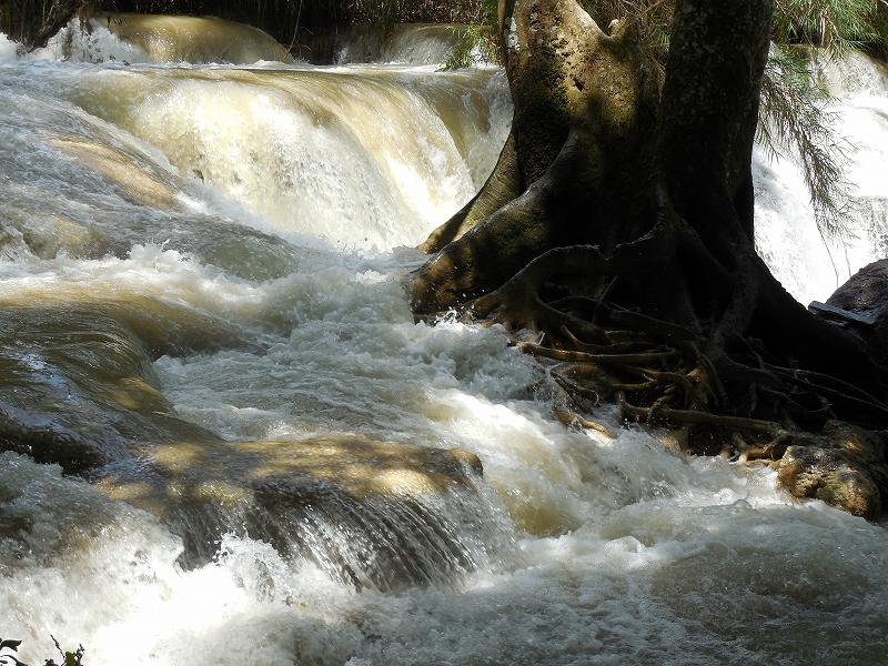 ルアンパバーン郊外のクアンシー滝_d0116009_846091.jpg