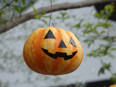 trick or treat。。。Happy Halloweenの 温かなElevensesのティータイム♪ @台湾スイーツ♪☆.。†_a0053662_11415522.jpg