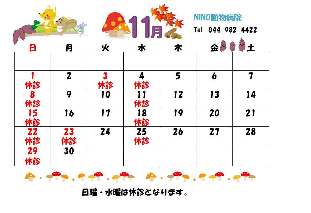 11月の診療日のお知らせ☆_e0288670_11231431.png