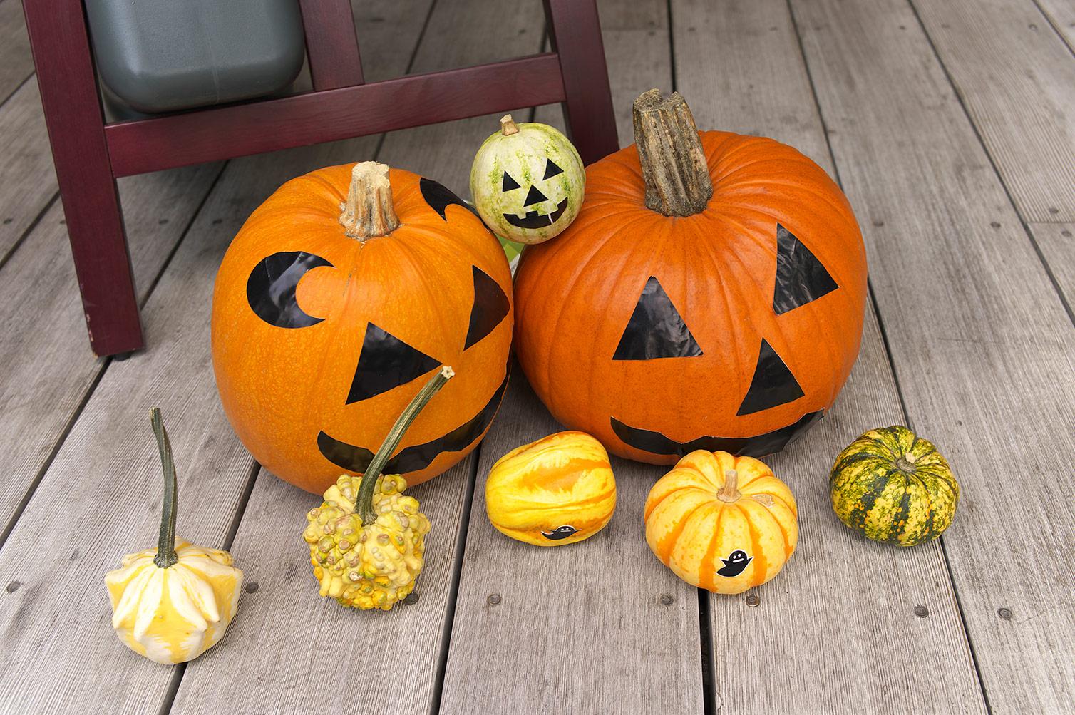かぼちゃ大王の逆襲_f0121181_3173947.jpg