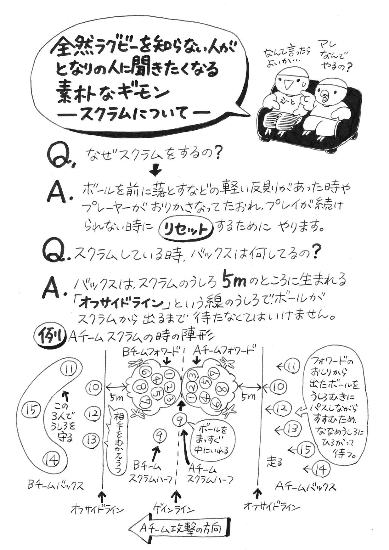 ラグビーインコ解説 ラグビー初心者の素朴な疑問_d0123492_18134779.jpg