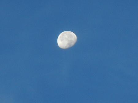 雲海の朝_e0120896_07390367.jpg