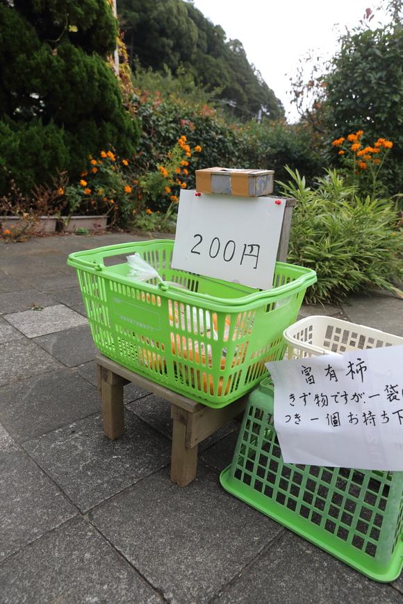 富有柿ゲット♪_b0275998_1614312.jpg