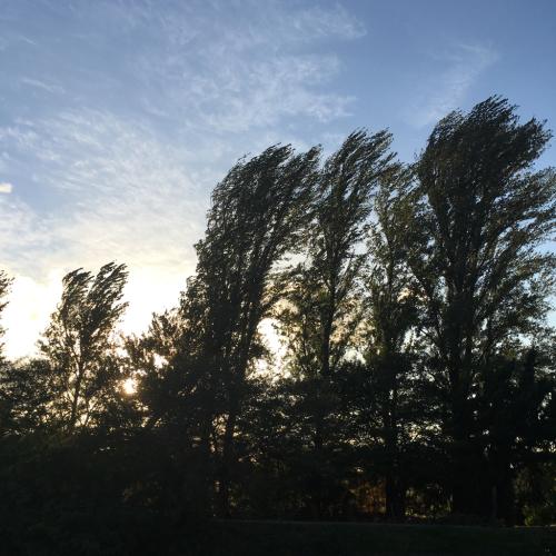 秋の空_e0239908_18005463.jpg