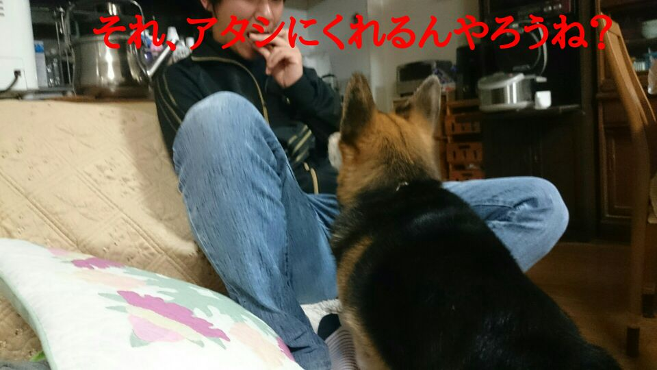 d0280157_18433873.jpg