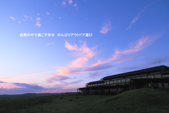 d0220663_2012629.jpg