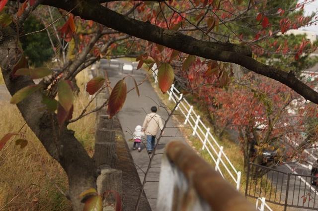 藤田八束の若者達への期待、生きる喜びを自分で作り出す方法、人生は楽しいはず、だから生まれてきたのです。_d0181492_23070413.jpg