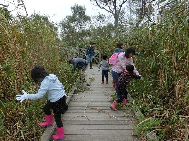 浮島ヶ原自然公園で「セイタカアワダチソウをやっつけよう!」作戦_f0141310_9281275.jpg