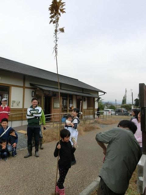 浮島ヶ原自然公園で「セイタカアワダチソウをやっつけよう!」作戦_f0141310_932193.jpg