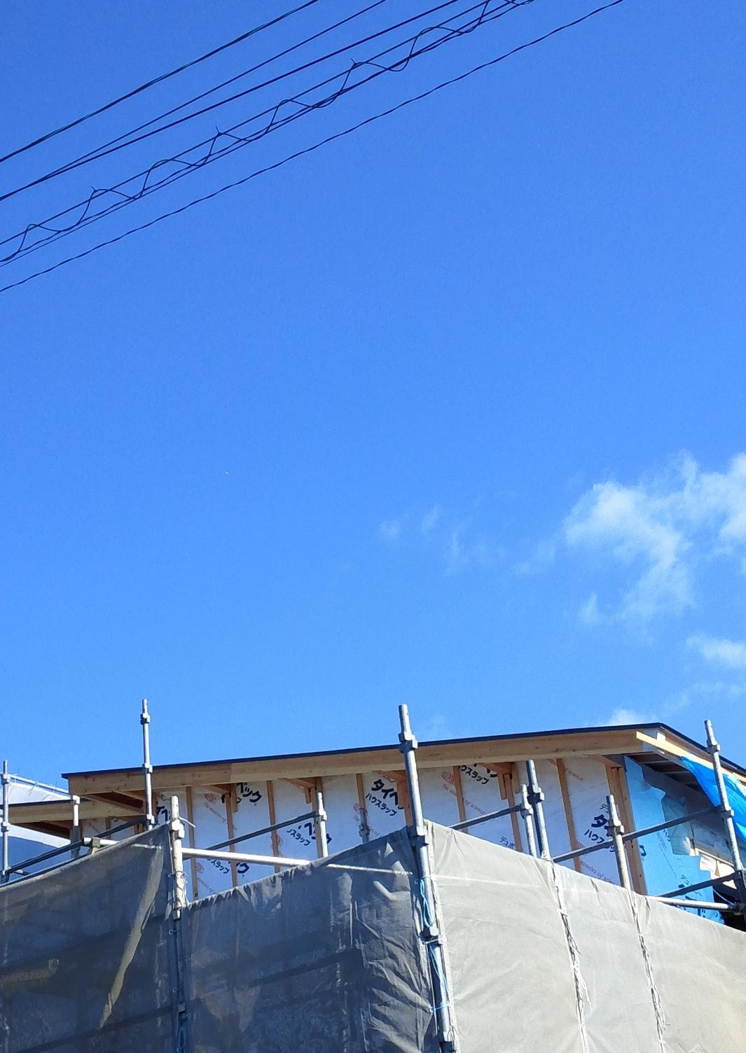 ついに我が家の上空で「銀色の葉巻型UFO」撮影に成功!?_e0171614_14122031.jpg