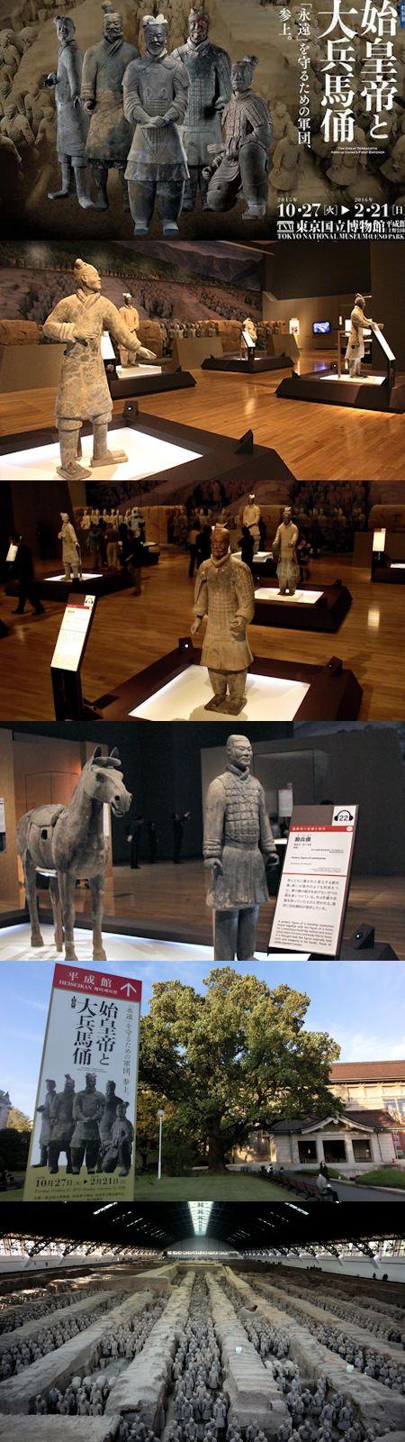 東京国立博物館の特別展「始皇帝と大兵馬俑」_c0315619_14432071.jpg