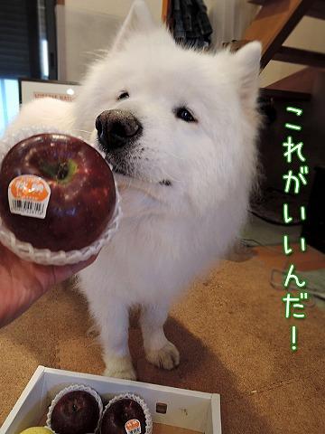 りんご三兄弟_c0062832_9481737.jpg