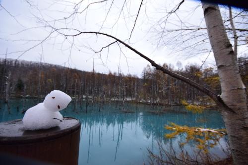 初冬の青い池_d0285540_21135823.jpg