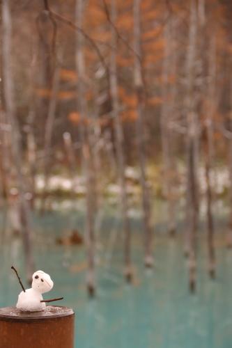 初冬の青い池_d0285540_21144344.jpg