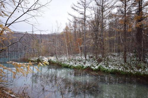 初冬の青い池_d0285540_21161321.jpg