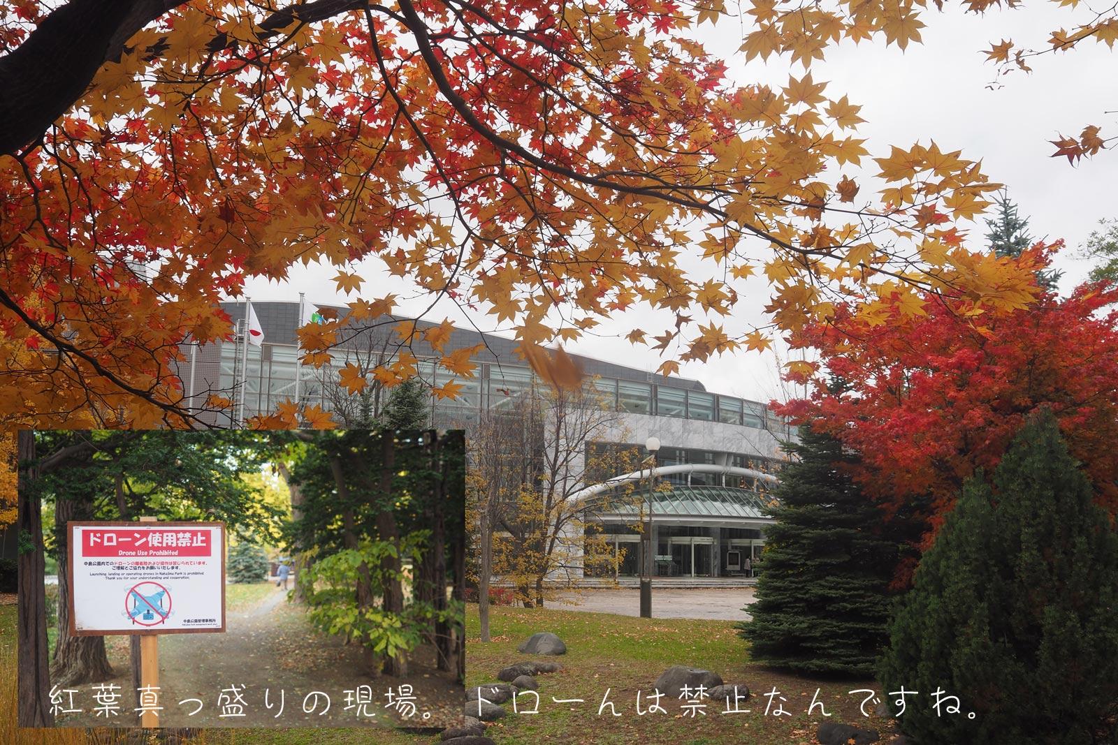 札幌_a0271402_9505360.jpg