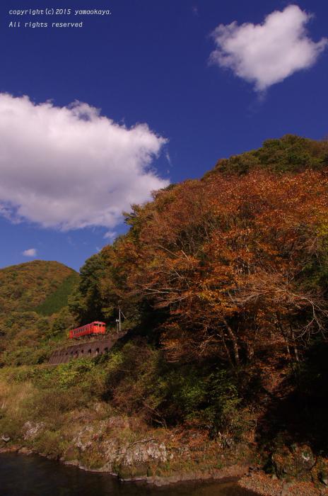 紅葉の渓谷へと_d0309612_1334158.jpg