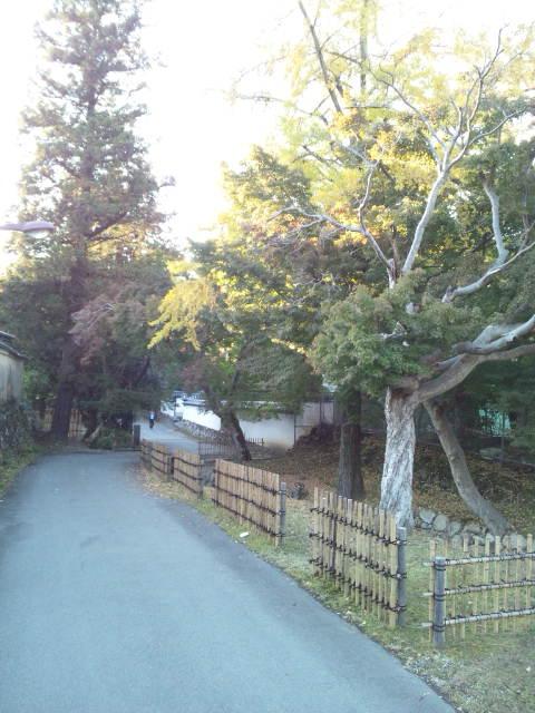 こんなところを歩いておりますが_c0001670_16211960.jpg