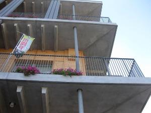 外壁に花をかざること。_d0297177_824974.jpg