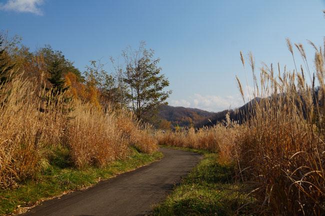 五天山公園_d0162994_19394229.jpg