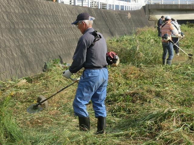 秋の日差しの中、小潤井川の草刈りと「ホルモンちゅうちゃん」での払い_f0141310_7225550.jpg