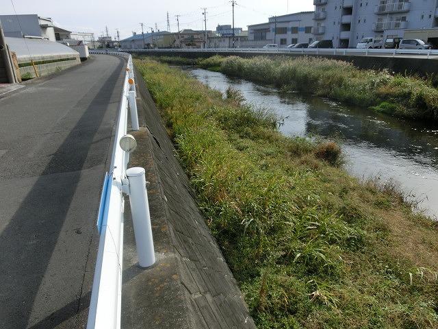秋の日差しの中、小潤井川の草刈りと「ホルモンちゅうちゃん」での払い_f0141310_7242716.jpg