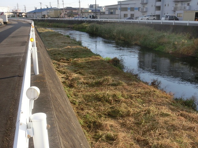 秋の日差しの中、小潤井川の草刈りと「ホルモンちゅうちゃん」での払い_f0141310_7244145.jpg