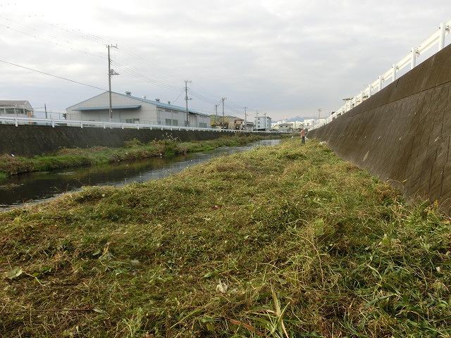 秋の日差しの中、小潤井川の草刈りと「ホルモンちゅうちゃん」での払い_f0141310_725372.jpg