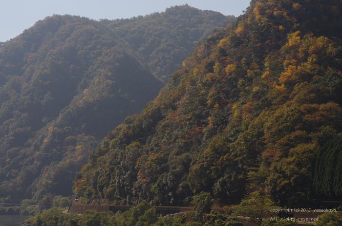 黄葉の山々_d0309612_1195680.jpg
