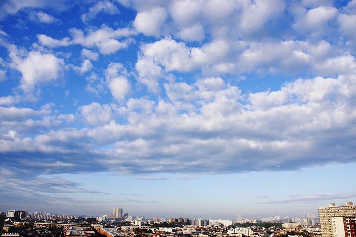 塔状雲 (高積雲) : 日々の風景
