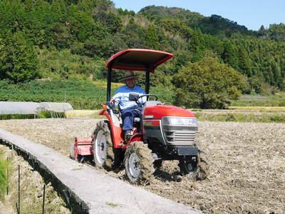 アスパラ 「なごみの里の朝採り『グリーンアスパラ』」 来年の収穫へ向け、秋の様子を現地取材_a0254656_174742.jpg