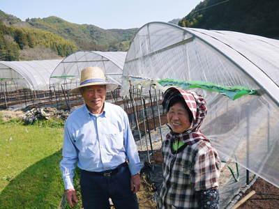 アスパラ 「なごみの里の朝採り『グリーンアスパラ』」 来年の収穫へ向け、秋の様子を現地取材_a0254656_198181.jpg