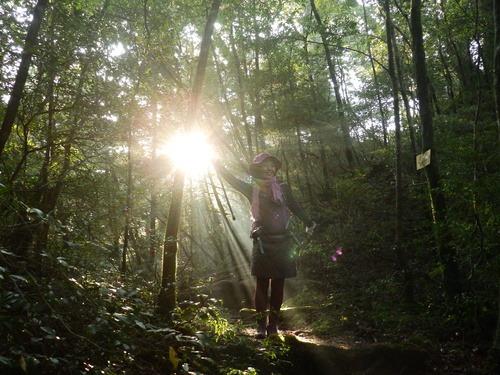 光の森を歩く_b0160957_12263963.jpg
