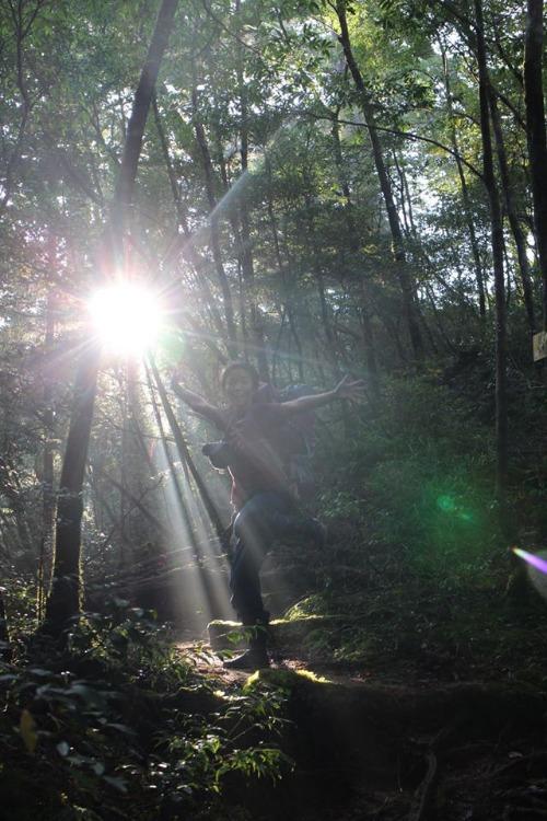 光の森を歩く_b0160957_12344966.jpg