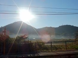 深まる秋、朝霧晴れる_e0175370_11154258.jpg