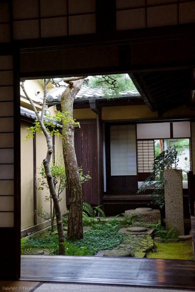 9月の御散歩Photo② 奈良町_e0137705_12202821.png