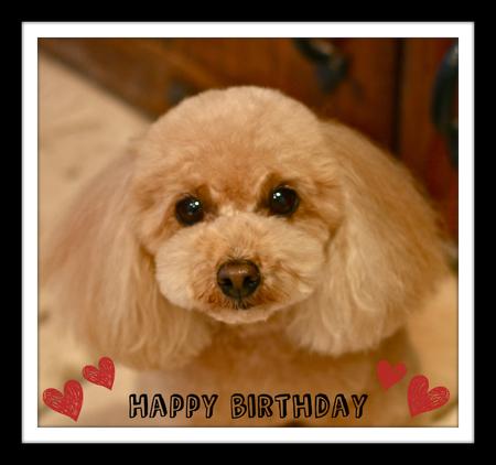 Happy Birthday♡タイム_d0060413_2243895.jpg