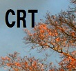 高齢者LD-SCLCに対する化学放射線治療は化学療法単独よりも生存期間を延長_e0156318_12204311.jpg