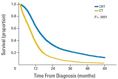 高齢者LD-SCLCに対する化学放射線治療は化学療法単独よりも生存期間を延長_e0156318_1226454.jpg