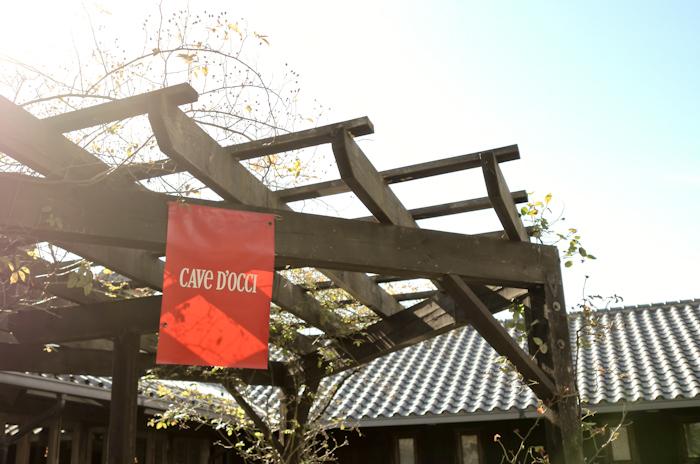 秋晴れは大好き☆_e0344430_2037415.jpg