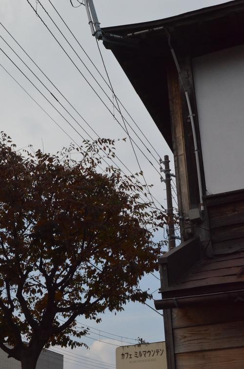 晩秋_b0207642_1335874.jpg
