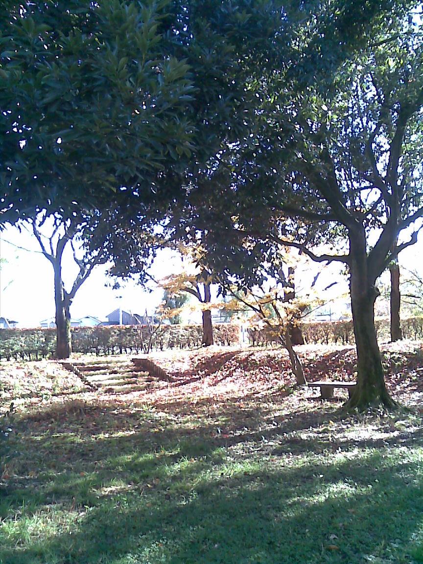 新潟五泉市、月岡温泉~磐梯山と那須の紅葉【11/4_5】_d0061678_1634742.jpg