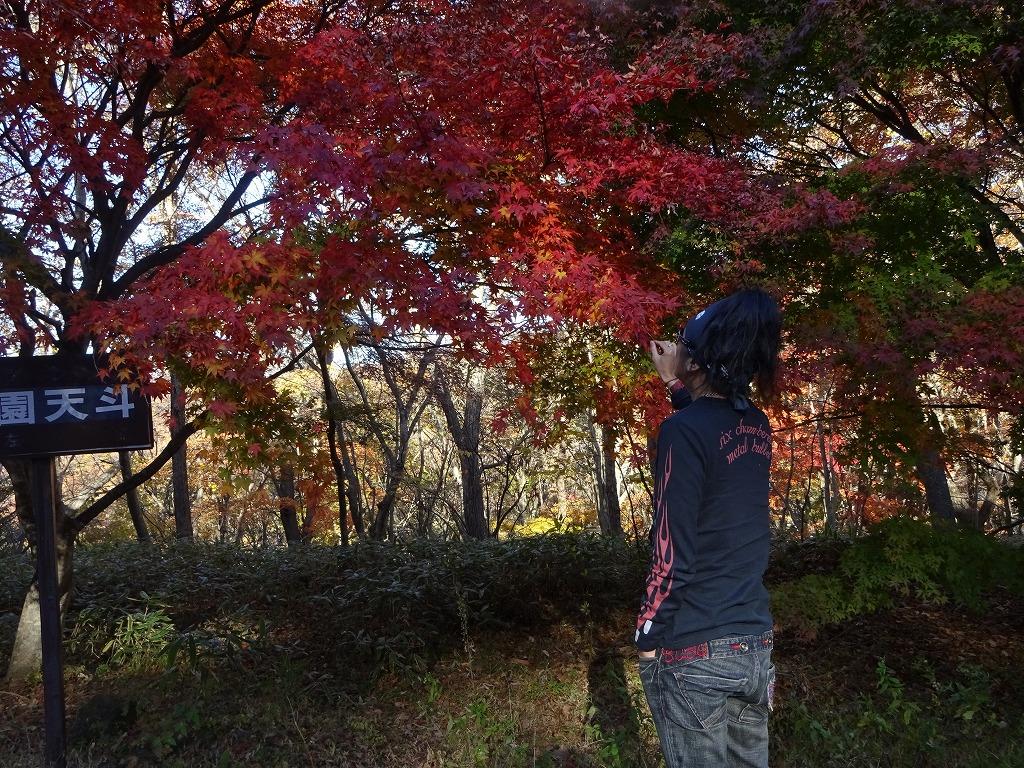 新潟五泉市、月岡温泉~磐梯山と那須の紅葉【11/4_5】_d0061678_17265517.jpg