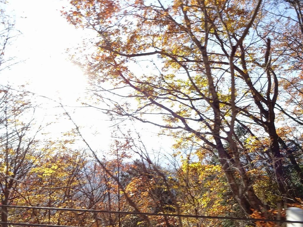 新潟五泉市、月岡温泉~磐梯山と那須の紅葉【11/4_5】_d0061678_1727865.jpg