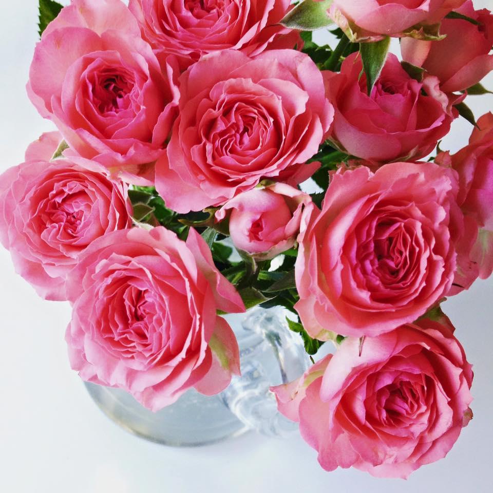 A dozen pink roses♡_b0195783_10502184.jpg