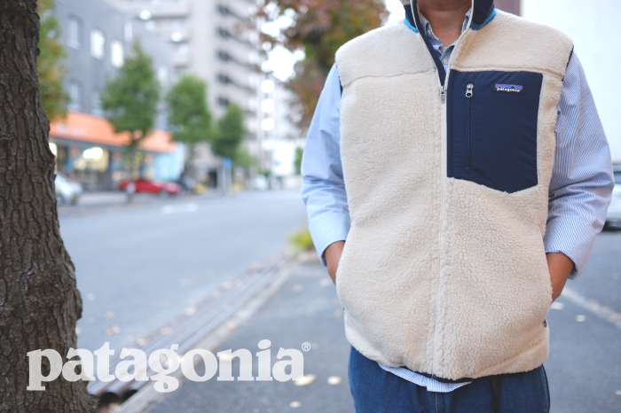 VEST is BEST~patagonia~_d0126729_173333.png