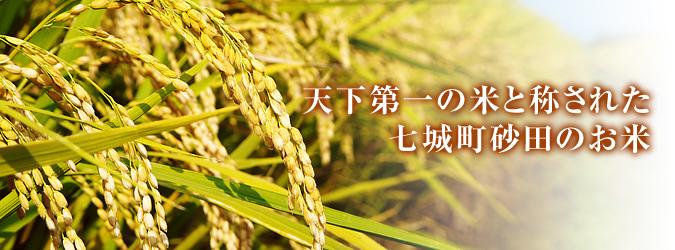 平成27年度新米!熊本の美味しいお米(七城米、砂田のれんげ米、菊池水源棚田米)好評発売中! _a0254656_1749285.jpg