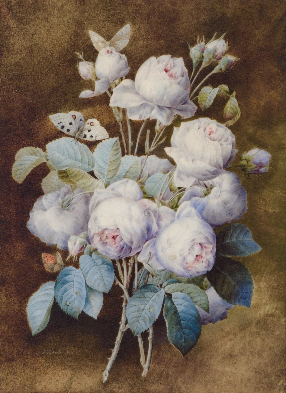 山梨県立美術館「花の画家 ルドゥーテのバラ」展  みどころ(1)_e0356356_15520255.jpg