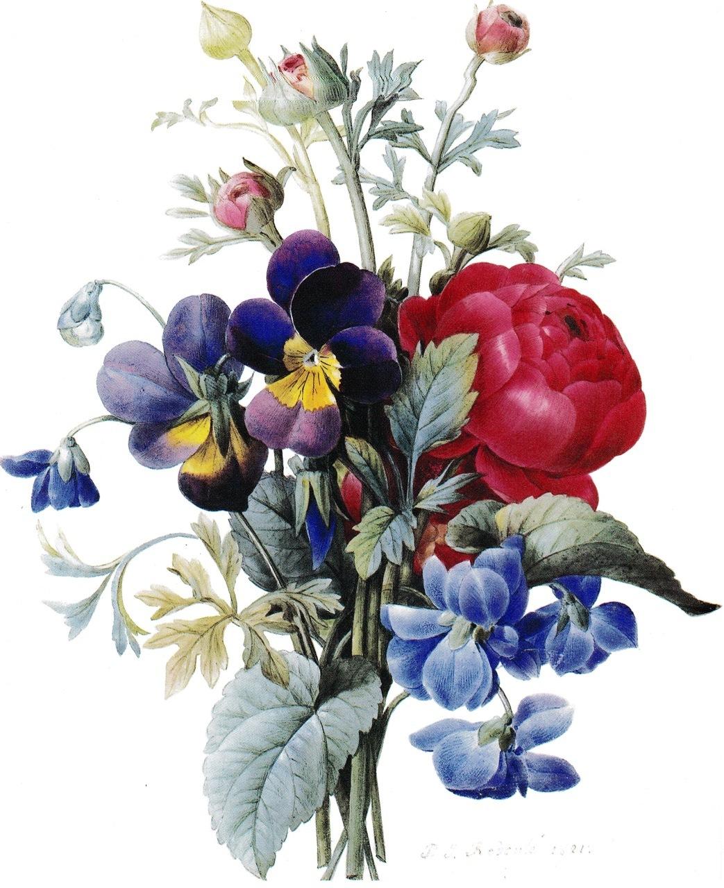 山梨県立美術館「花の画家 ルドゥーテのバラ」展  みどころ(1)_e0356356_15533649.jpg